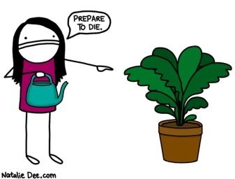 im-the-plantsecutioner